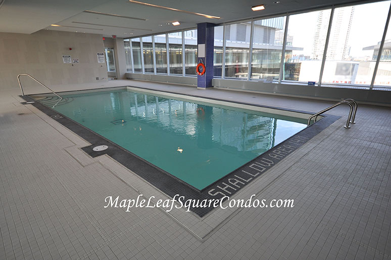 Toronto harbourfront condos for sale rent elizabeth Square swimming pools for sale